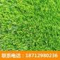 路弛人工草坪�S家 足球�鋈嗽觳萜鹤龇� 人造草坪塑料